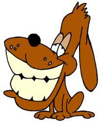 Hoe verzorg je het gebit bij jouw hond?